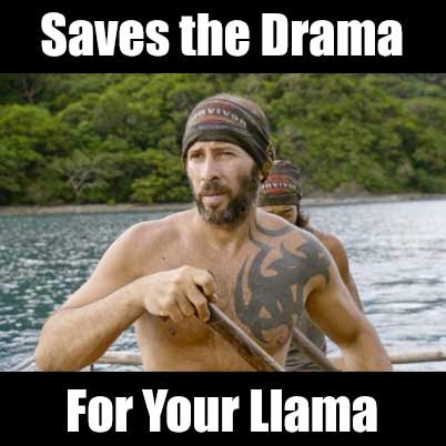 SAVE YO' DRAMA FOR YO' LLAMA.